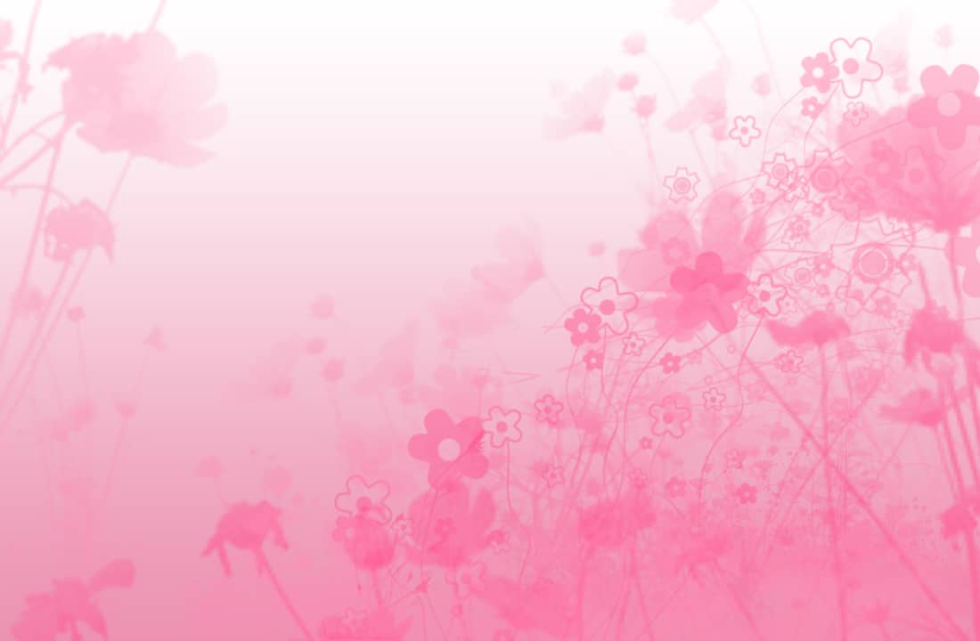 Pink-Color-Background-Sweet-Pink-05